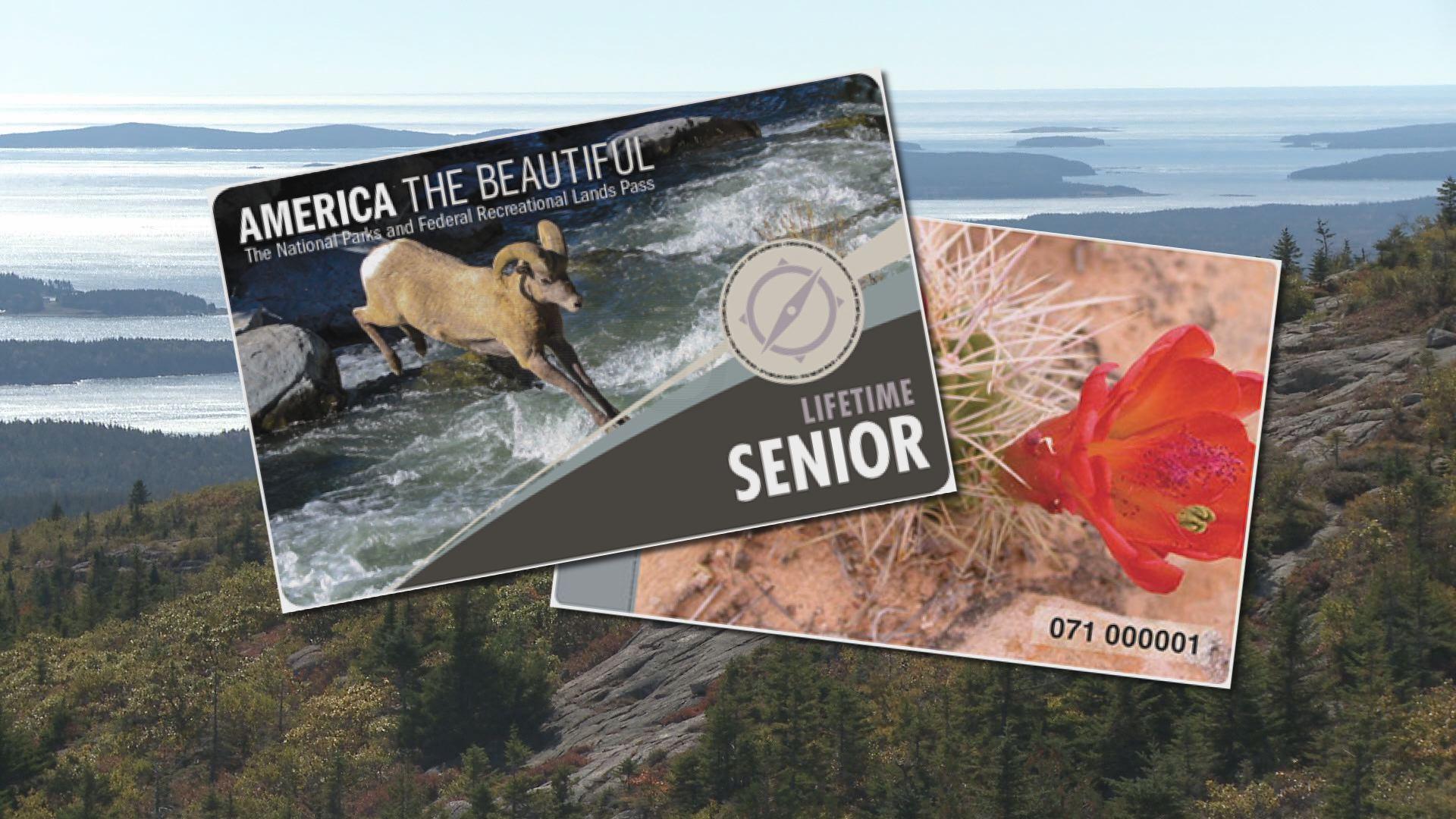 Acadia sees dramatic increase in sale of senior lifetime for National park senior citizen lifetime pass